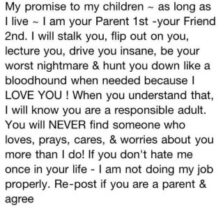 The Parenting Plan    An Open Letter to My Kids   It Seemed Like a